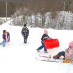 Дитячий зимовий транспорт: різноманітність варіантів